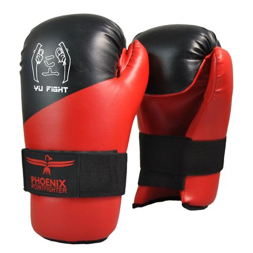 Handschuh Pointfighting
